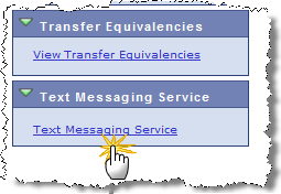 Text Messaging Service
